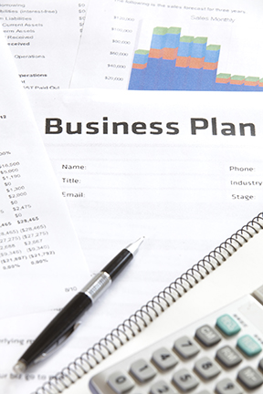 business plan review and evaluation